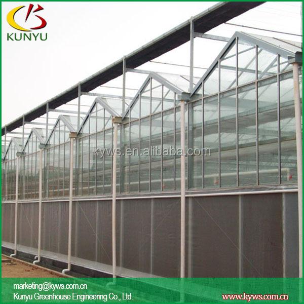 Venlo Roof Greenhouse Design Greenhouse Construction Buy