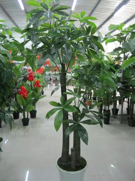Indoor Types Of Evergreen Ornamental Plants Artificial Plants Buy Types Of Ornamental Plants