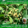 100% Pure Gymnema Sylvestre Plant Extract Gymnemic Acids 25%