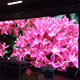 High definition full color smd 64x32 led display module dot matrix p3 shenzhen factory
