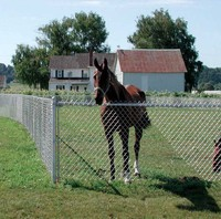 Cheap animal wire fence horse fence panels high tensile horse fence