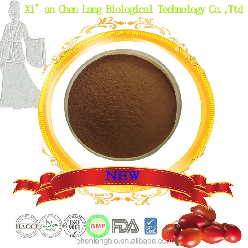 High Quality Powder With Best Price Rose Hip Extract