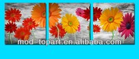 Flower picture, 3 pieces canvas art