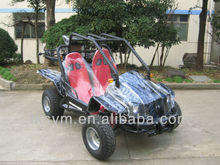 TK250gk-7 250cc Go Cart | Racer gas mini go kart