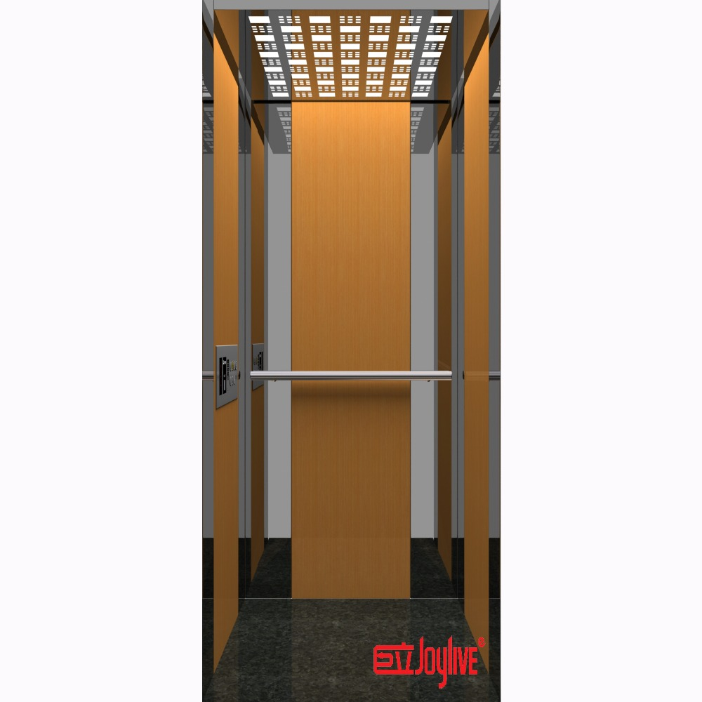 Joylive used glass home elevators for sale with price