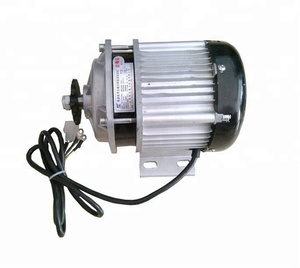 Electric tricycle bldc motor 48v rickshaw motor power