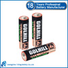 AM3 Size AA 1.5v lr6 aaa alkaline battery