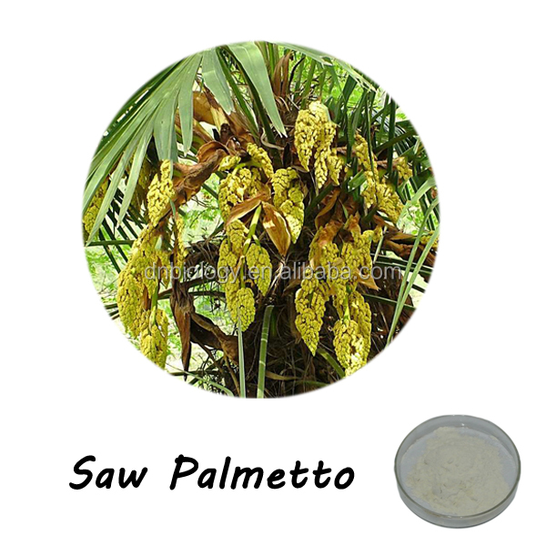 ISO9001 factory high quality natural saw palmetto/ Saw Palmetto Extract /Serenoa repens extract fatty acid 45%