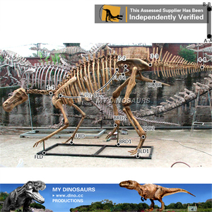 MY DINO-M05 Animated dinosaur skeleton model
