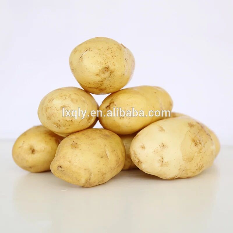 wholesale potato grow bag with high quality