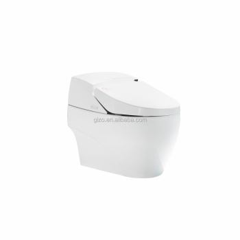 Automatic Heated Seat Electric Intelligent Toilet