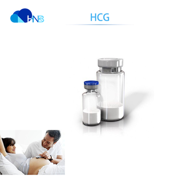 High quality HCG 5000iu powder for human injection of HCG 9002-61-3 in best  price, View HCG, HNB Product Details from Xi'an Harmonious Natural