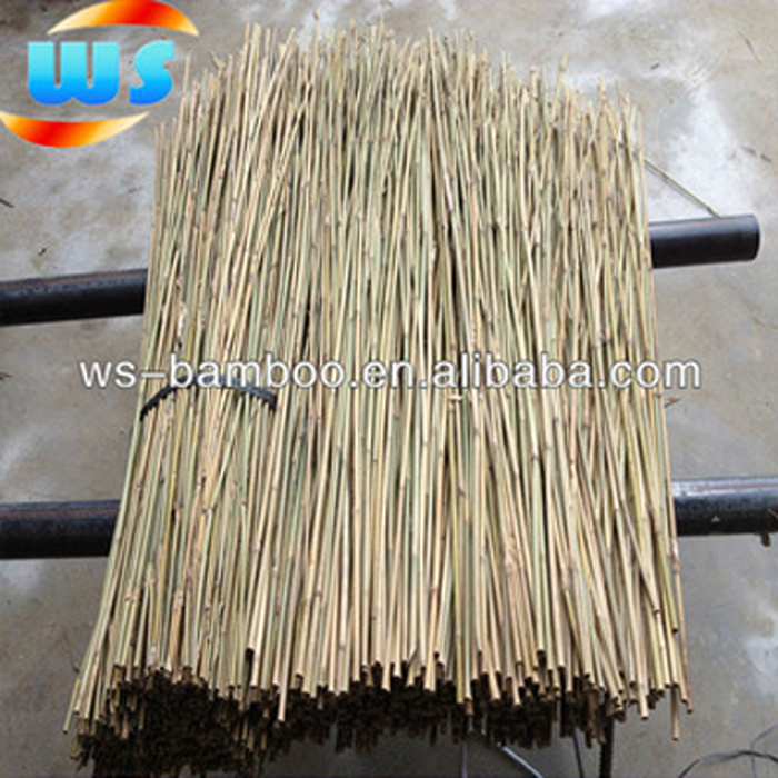 Garden Tools/Bamboo for plant support (Olive tree support)