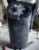 China Made Black Granite Germany Style Carved Rose Flower Column Headstone