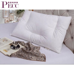 High Quality wholesale Low Price Decorate Thin Feather Pillow