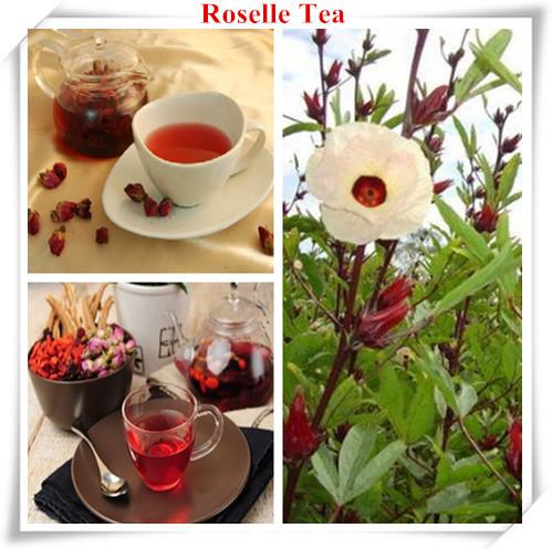 hibiscus sabdariffa tea weight loss