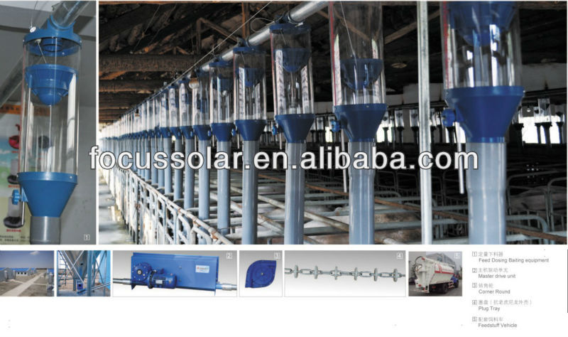 labor saving automatic pig feeding system with low price