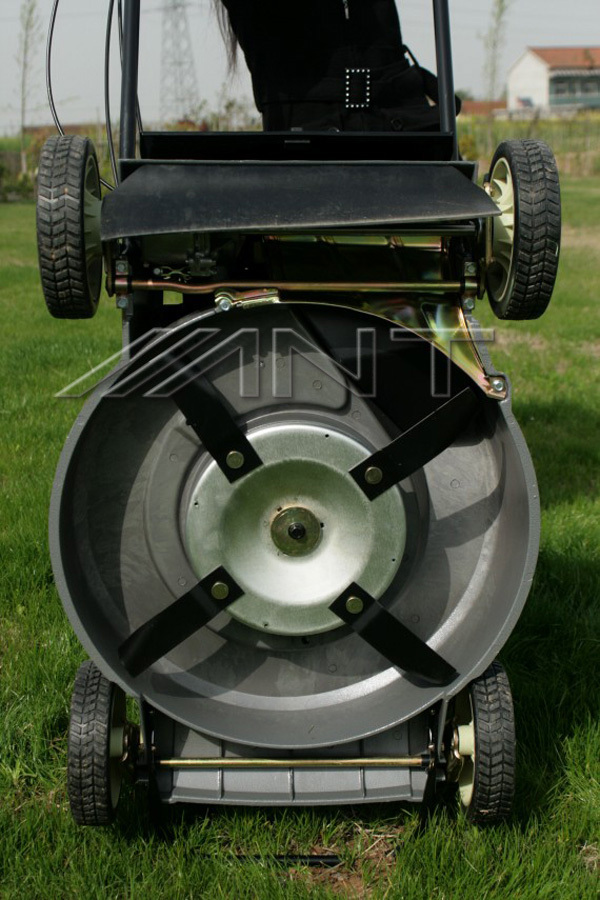 Ant216s Professional Swing Blade Lawn Mower Gasoline Buy