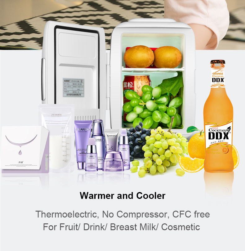 Wholesale Cheap Portable 5 Liters Tiny Fridge DC 12v AC 220V Thermoelectric Cosmetic 5L Mini Refrigerator for Cars and Bedroom