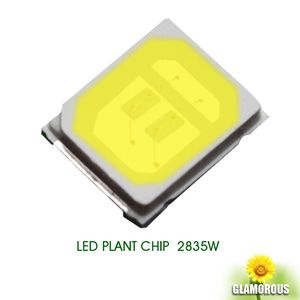 high lumen 120lm-130lm Bridgelux chip 1W 0.5w 0.2w SMD 2835 LED white