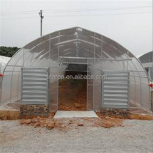 Hot sale cheap poly agriculture green house for agriculture grow