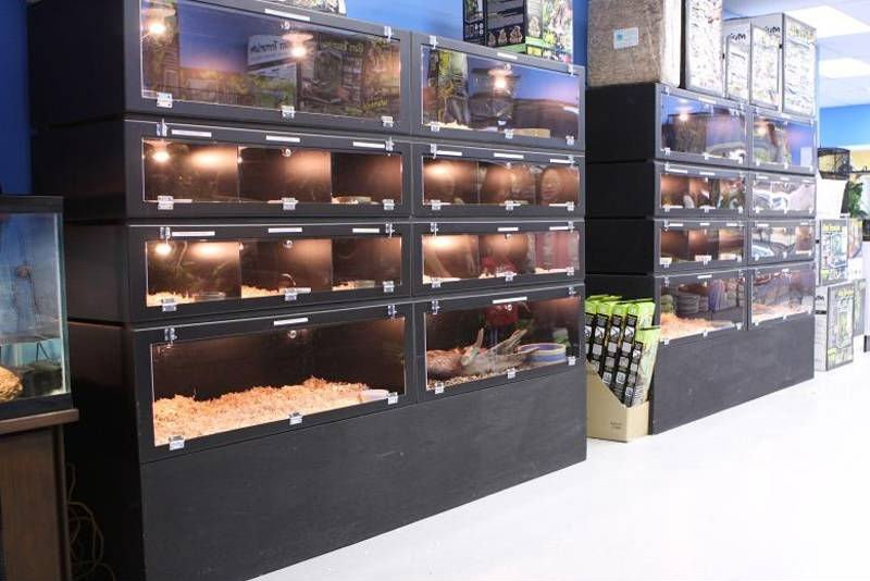 Reptile Cages - Buy Reptile Cages Terrariums Product on Alibaba com