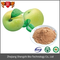 Factory Supply Plum Fruit Extract Powder/Organic Natural Dried Plum Powder