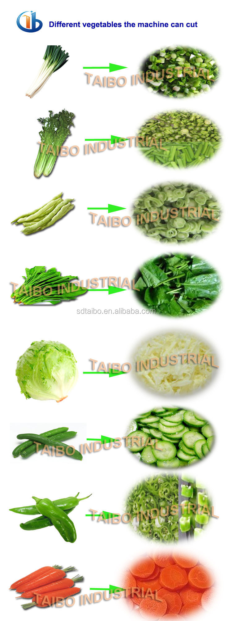 Industry Cut Lettuce,Leek,Celery,Spinach Into Segments/carrot ...
