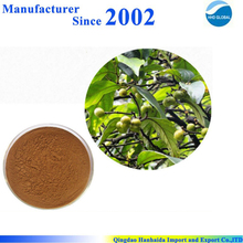 Chinese supply high quality Pygeum Africanum Extract , Pygeum Africanum powder , Pygeum Africanum p.e