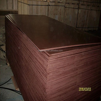 Birch Core film faced plywood with russian birch core floor painted plywood china timber buyers