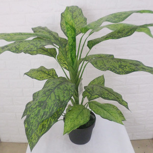 Item No.10030201 China Aglaonema artificial plants tree for indoor decoration
