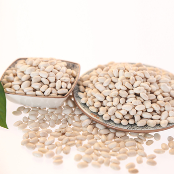 HPS natural cannellini beans for sale