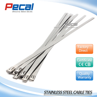 Strong strength ball lock uncoated type 304 stainless steel cable ties