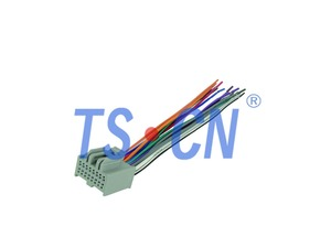 TSGM406-21 Into Radio Harness cable terminal wire connector audio connectors/car audio wiring harness made in china:TSCN