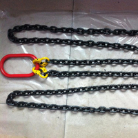 Best Price & Quick Delivery G80 Alloy Steel Mining Chain