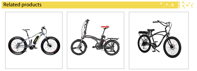 three wheel 48V/5 00W lithium battery electric bike with best quality
