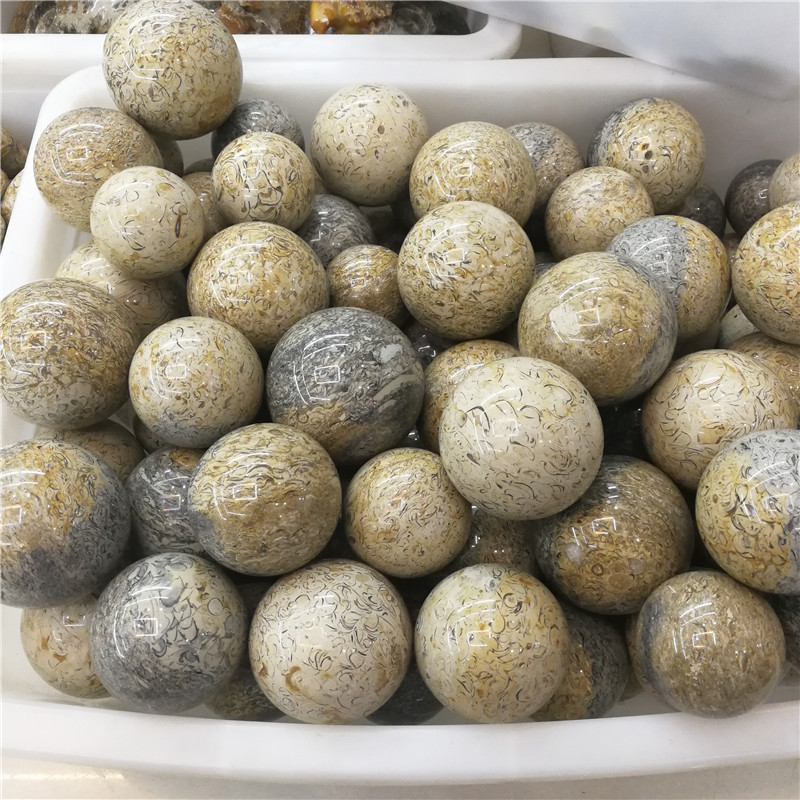 Wholesale High Polished Dinosaur Bones Quartz Stone Ball For GYM Exercise