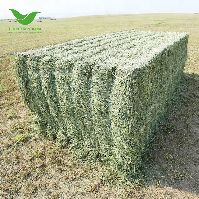 T&H premium quality alfalfa hay