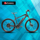 Sataway new model pedelec ebike