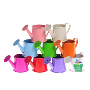 Wholesale custom promotional small mini cute tin galvanized watering can