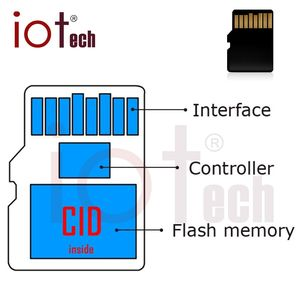 Changeable Real Capacity cid Memory SD Card 16GB 64GB Class10 Micro Size