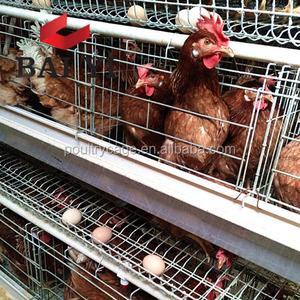 poultry farm building business plan in marathi language