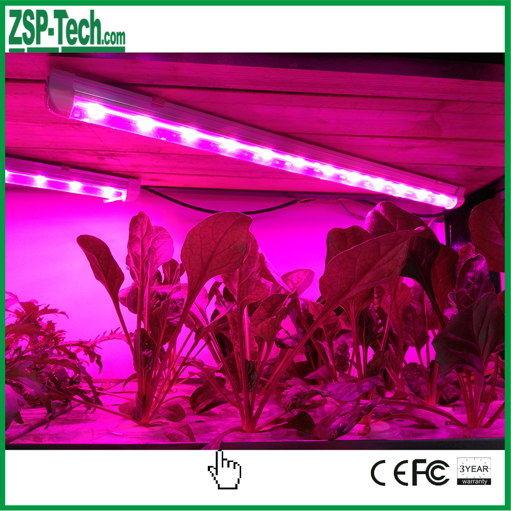 china made full spectrum 50w procyon 100 led grow lights