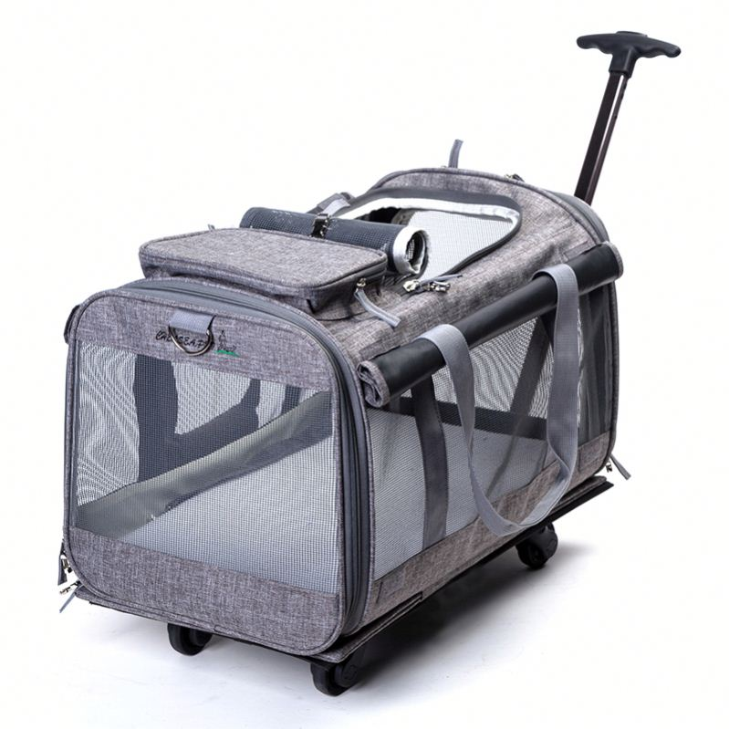 Commercio all'ingrosso portatile 900D neve poliestere two tone pieghevole grande show cane trolley pet passeggino carrier con gatto volante