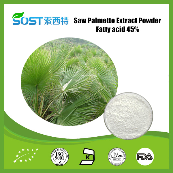 Saw palmetto P.E. Fatty Acids 45% Saw Palmetto Extract Powder