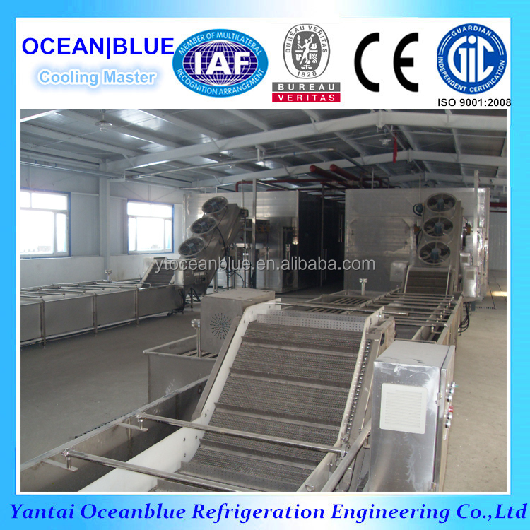 IQF Fruit And Vegetable Fluidized Tunnel Freezer