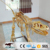 OA8343 Amusement life size replica dinosaur golden skeleton