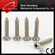 304 316 stainless steel pan head wafer head round head self tapping screw