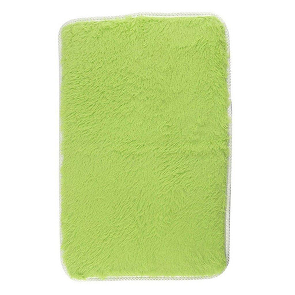 ZX101 Candy Color Soft Anti-Skid Carpet Flokati Shaggy Rug Living Bedroom Floor Mat for Front Door Openings Inside Floor Dirt Trapper Mats Cotton Entrance Rug (Green)