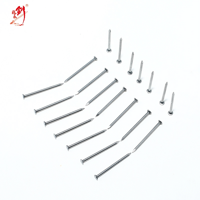 common wire nail for construction with best price